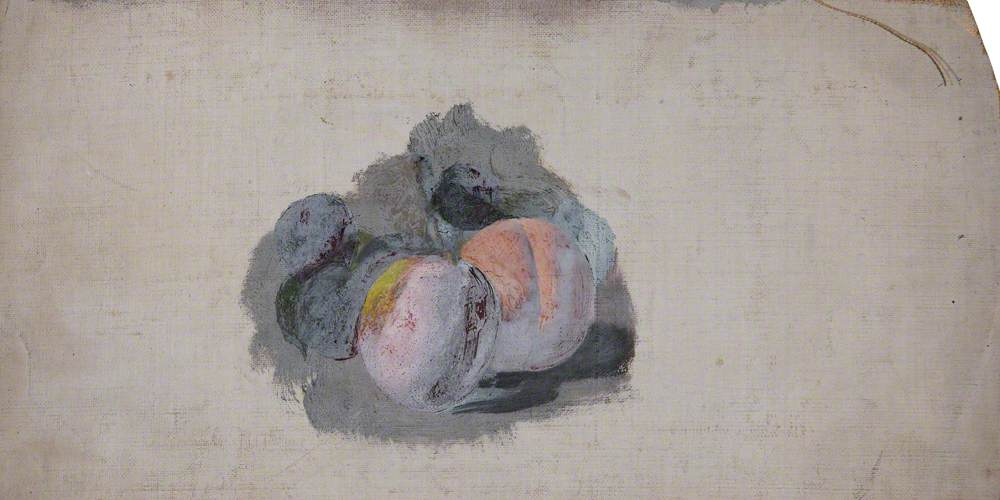 Study of Plums