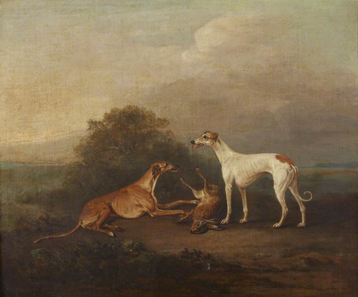 Two Greyhounds and a Dead Hare