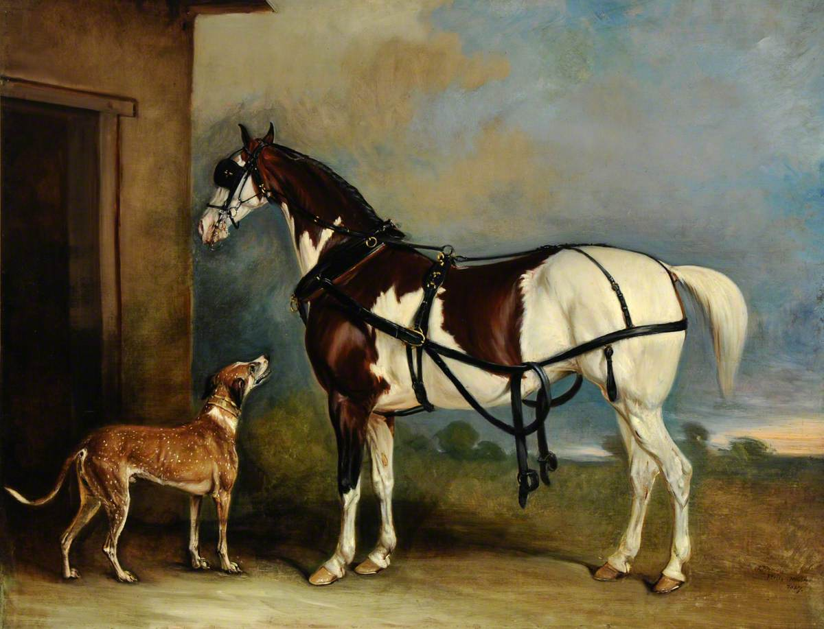 'Lofty', a Skewbald Carriage Horse, with a Greyhound