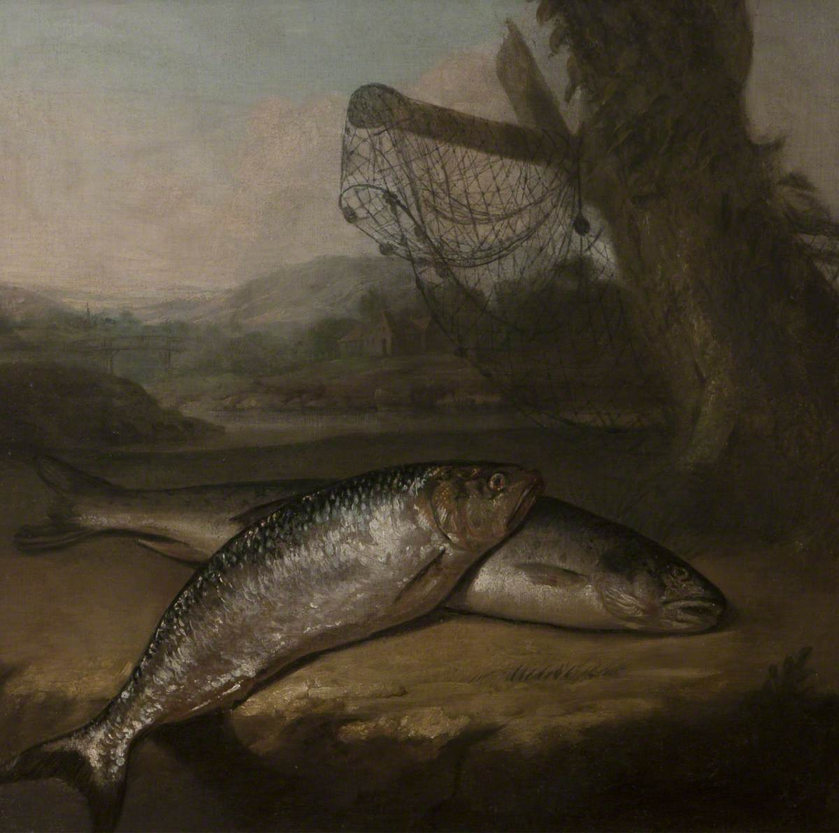 Atlantic Salmon and Allis Shad, by the River Wye (?)