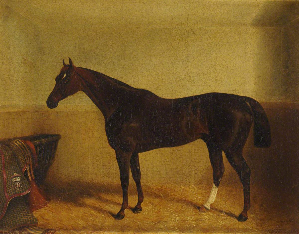 A Dark Chestnut Horse in a Stable