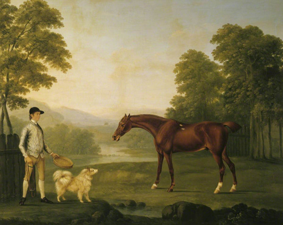 A Jockey (in the Duke of Grafton's colours?) with a Chestnut Racehorse and a Pomeranian Dog in a Park