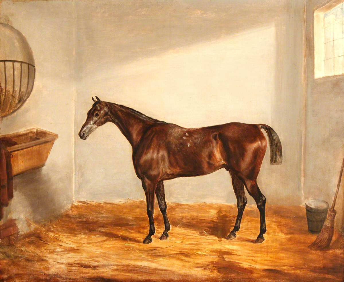 A Bay Horse in a Stable
