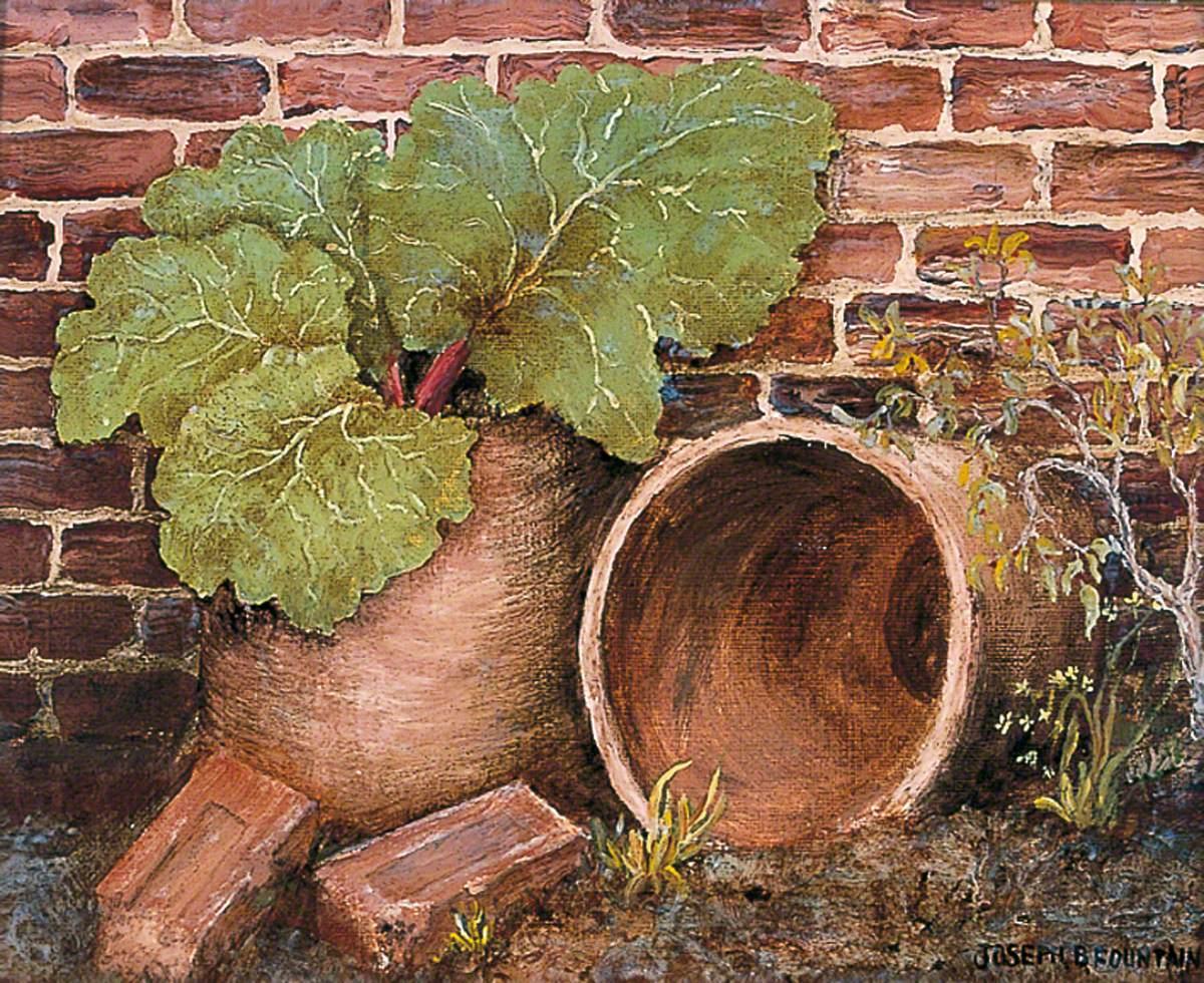 Bricks, Pots and Rhubarb