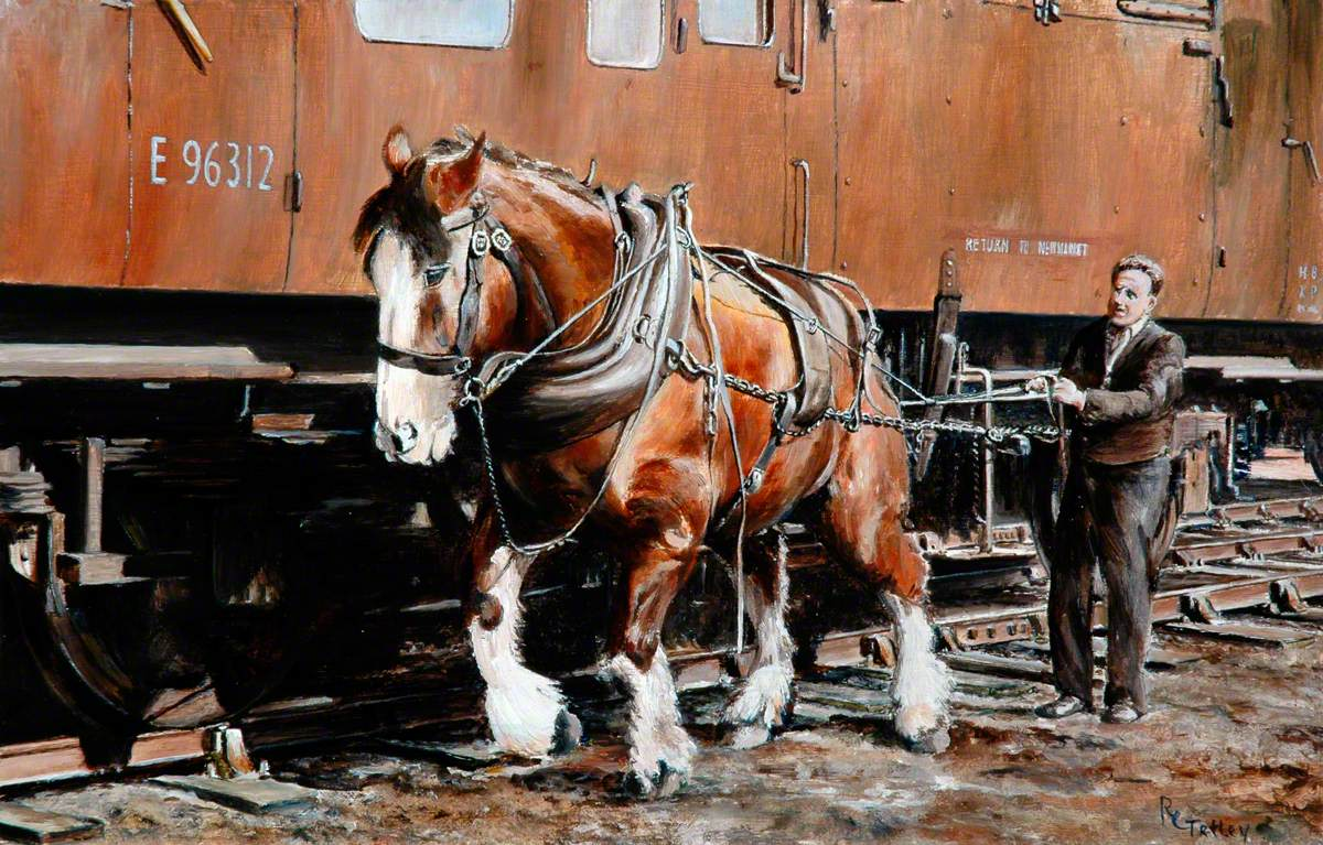'Charlie', the Last British Railways Shunting Horse, at Work with His Driver at Newmarket