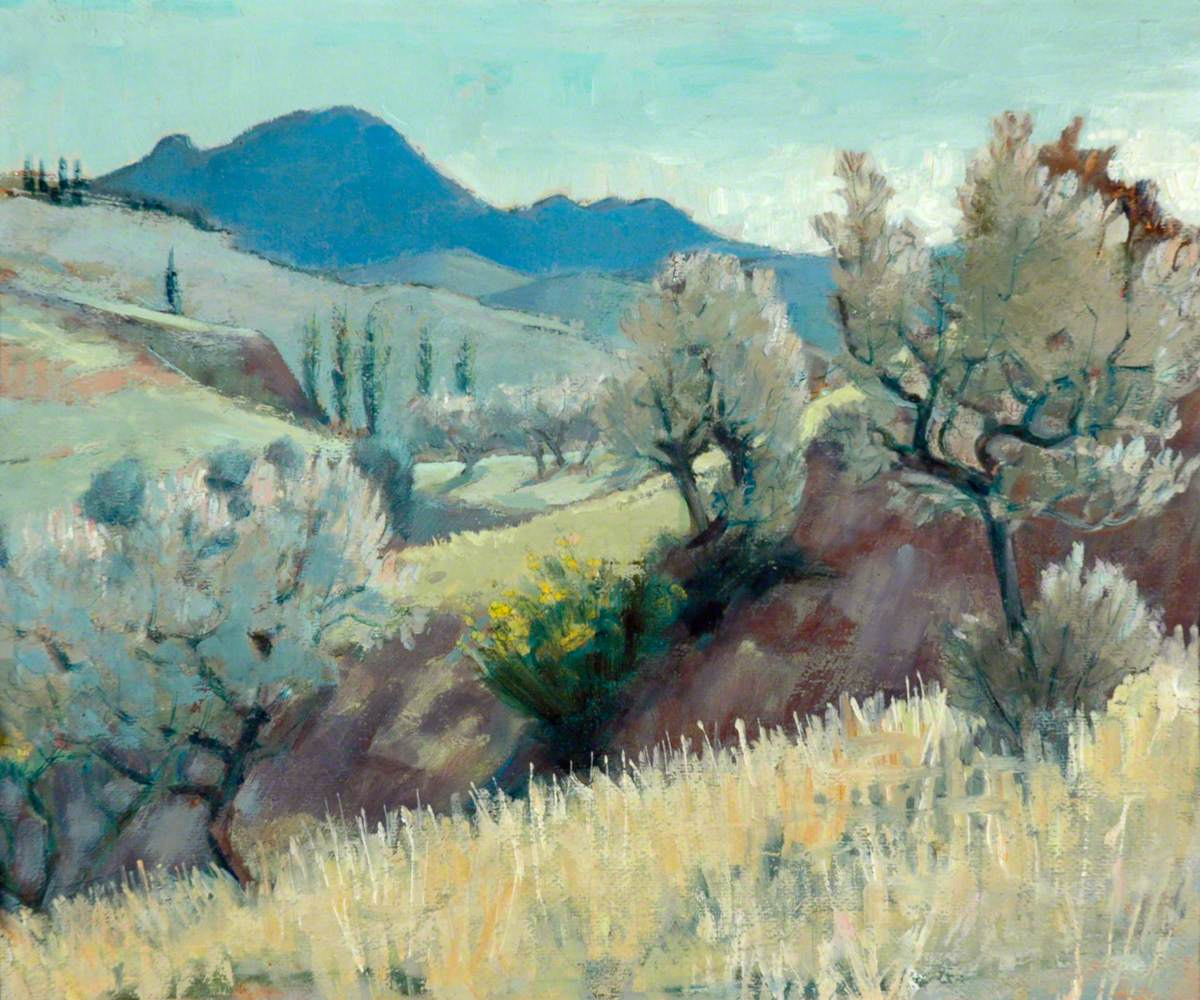 Olive Trees, Buis-les-Baronnies