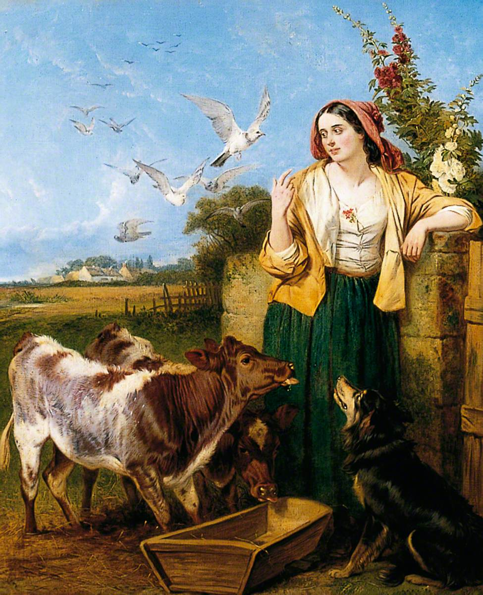 Feeding the Calves