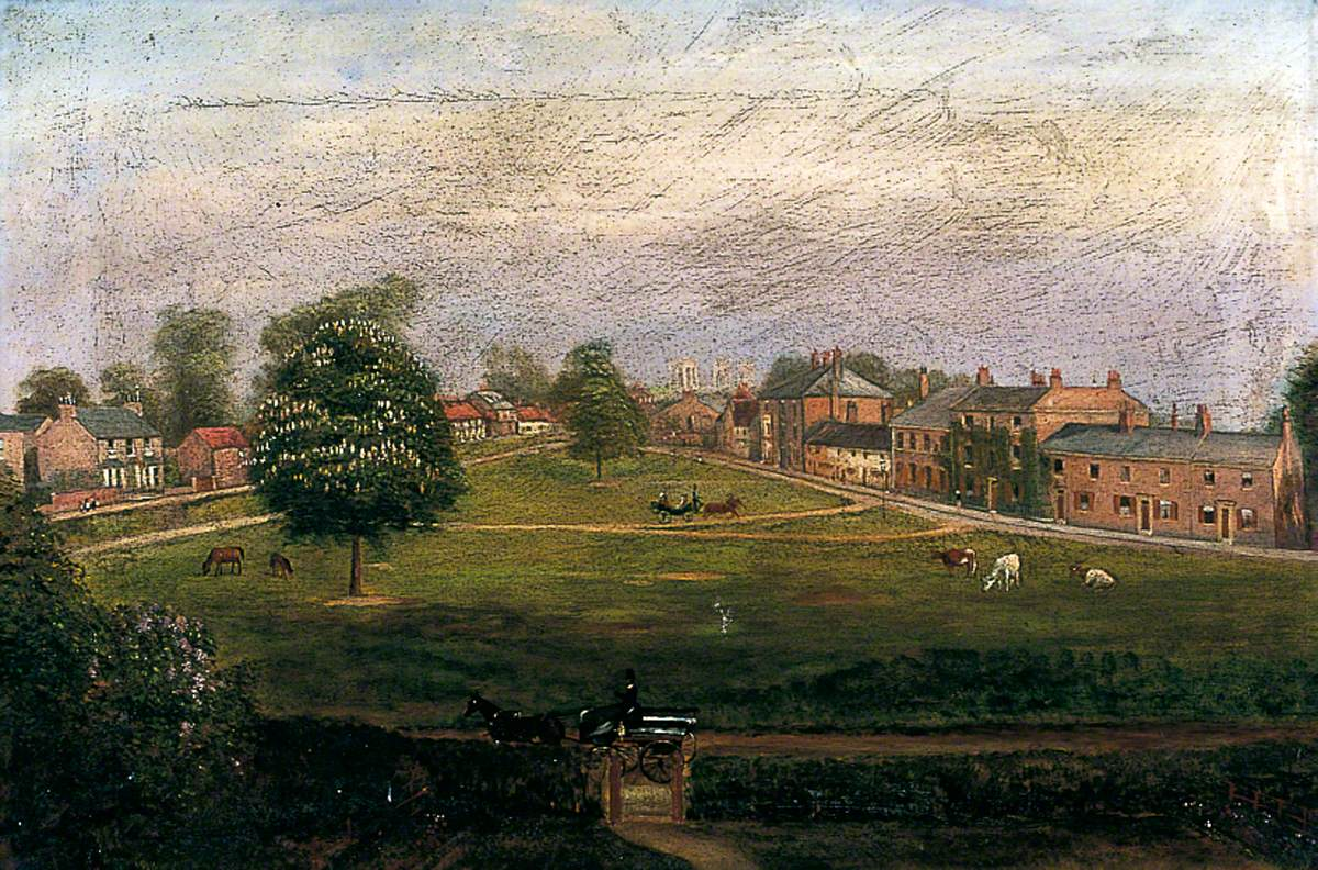 Acomb Green: The View from My Window
