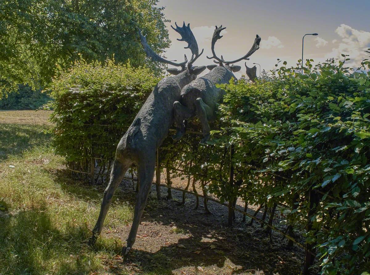 Deer Leap