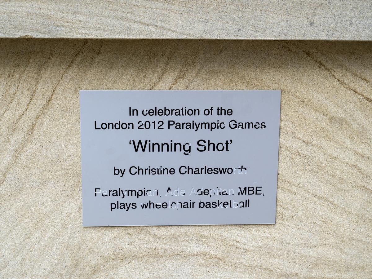 Winning Shot (Ade Adepitan)
