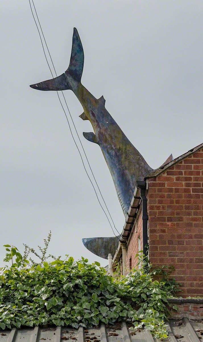 Untitled 1986 (The Headington Shark)