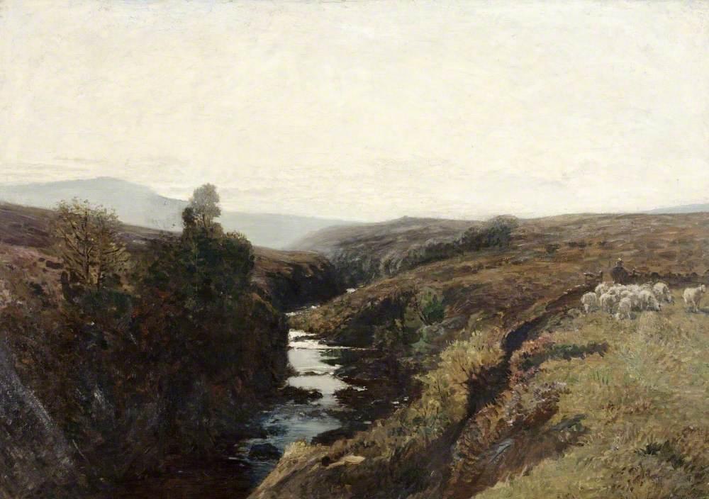 Craggy Burn, Sutherland