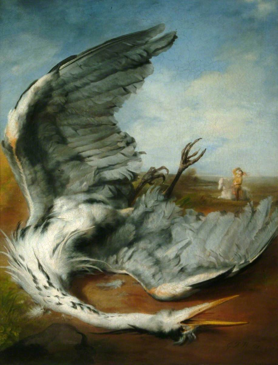 The Wounded Heron