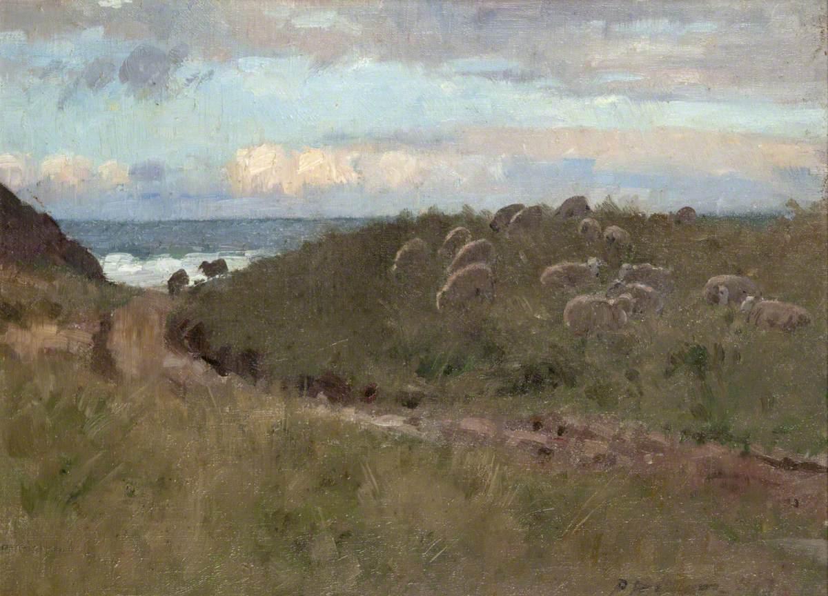 Gullane Links, Evening