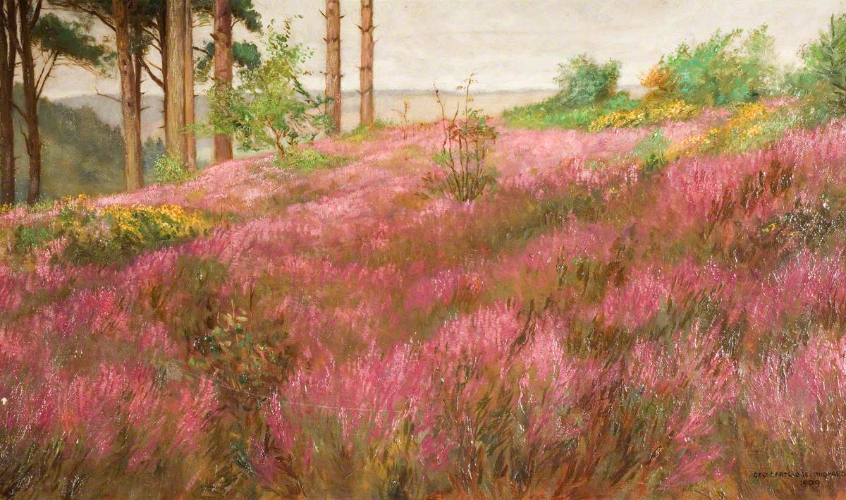 In September, a Staffordshire Hilltop