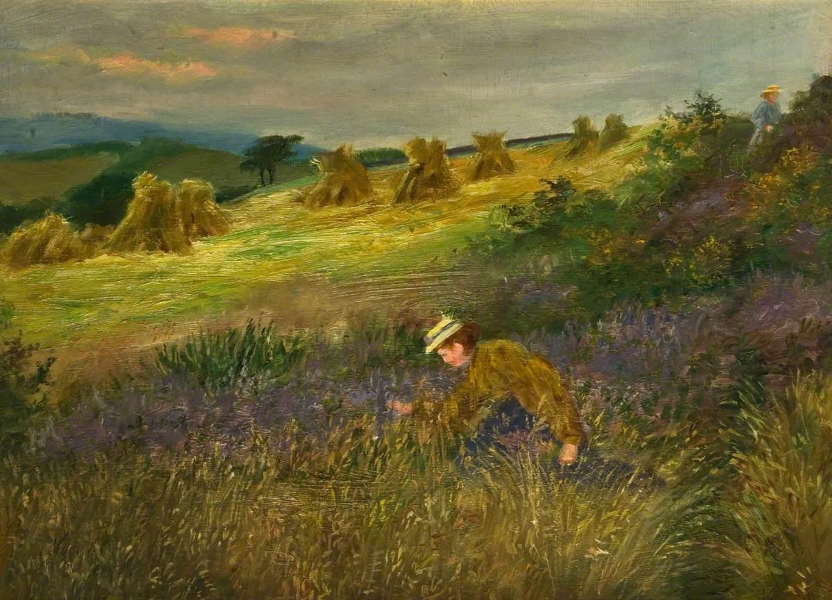 Field to Daisy House, Horton