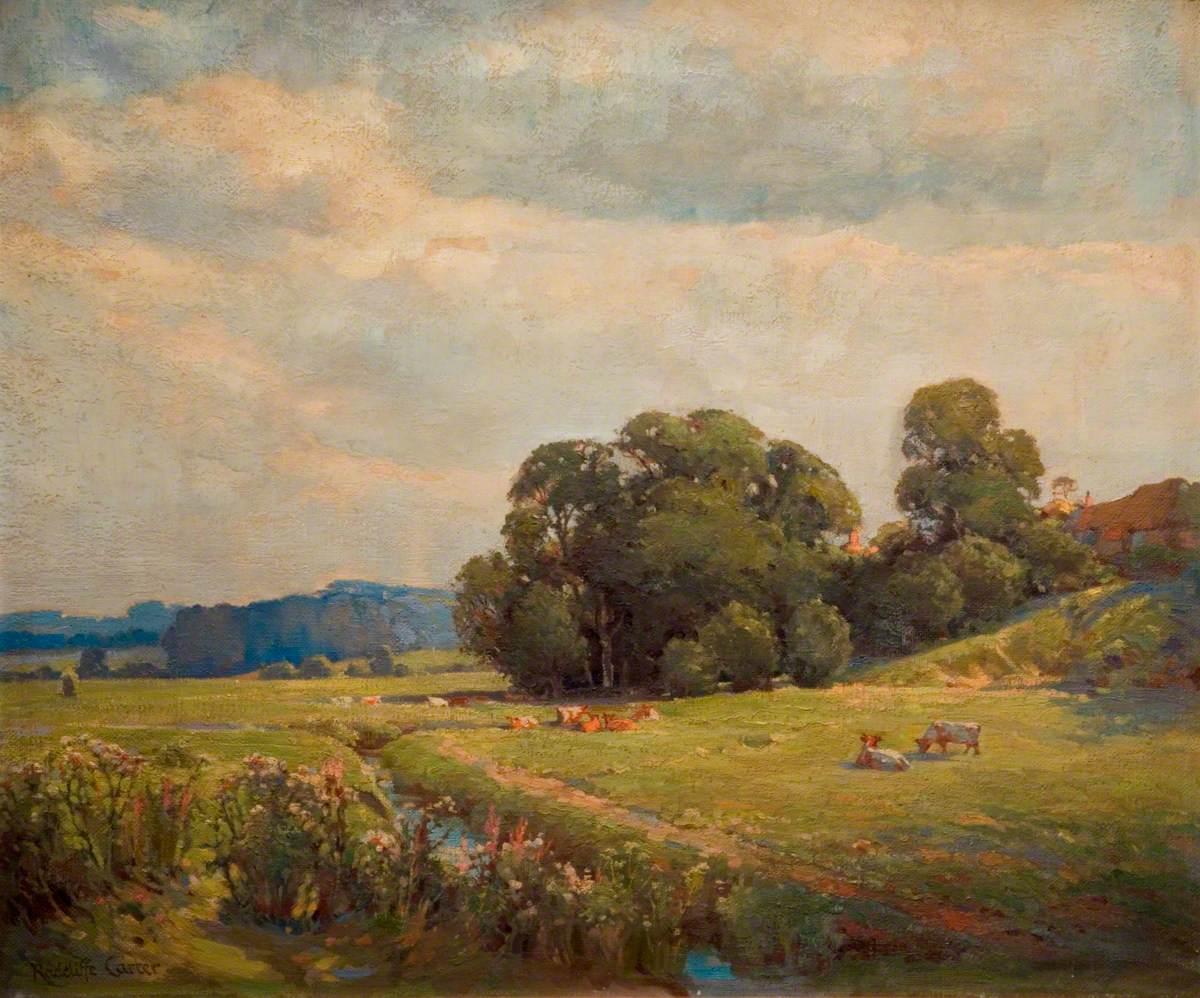 Water Meadows, Sussex