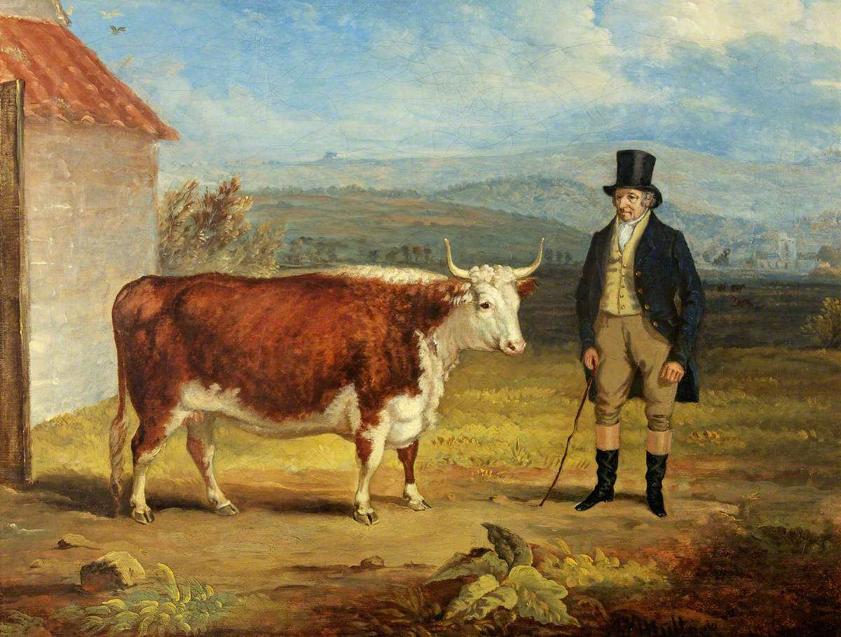 Mr James Hodges and His Two-Year-Old Hereford Heifer