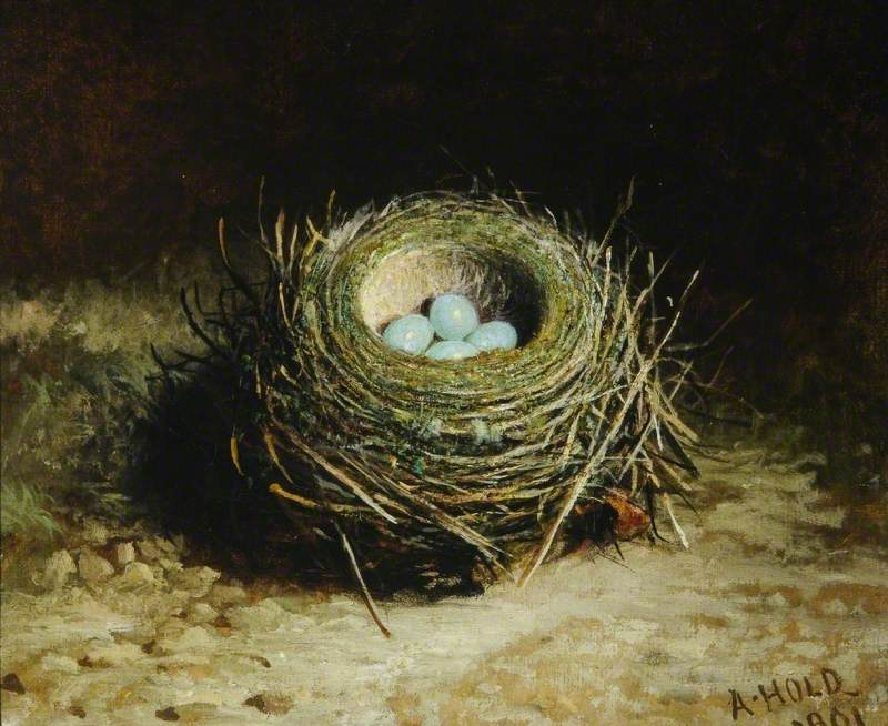 Nest with Four Eggs