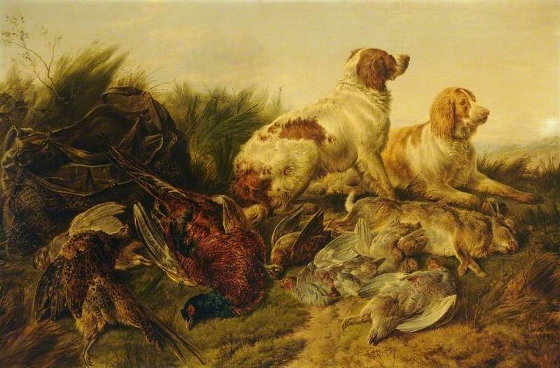 Hunting Dogs and Pheasants
