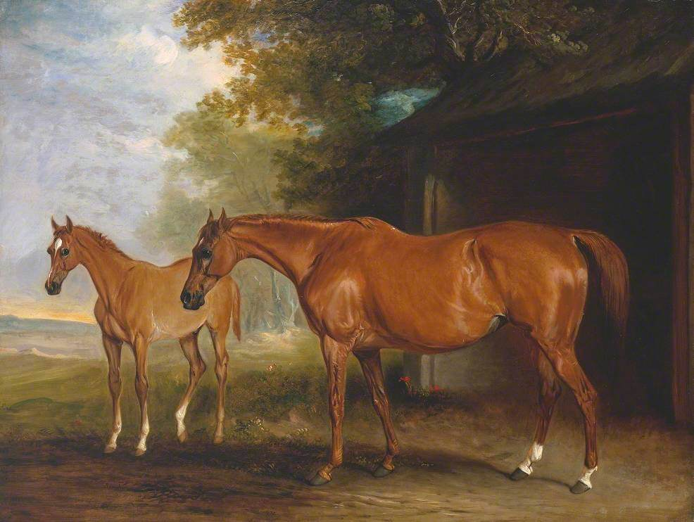 Defiance, a Brood Mare, with Reveller, a Foal
