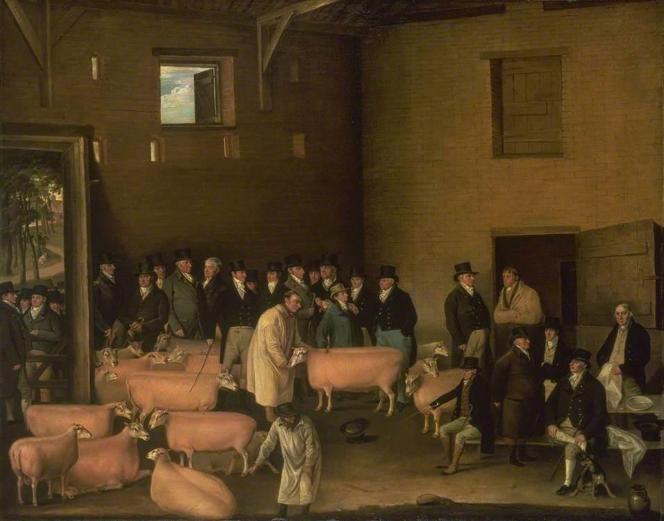 Thomas Morris's Sheep Show at Barton-on-Humber, Lincolnshire