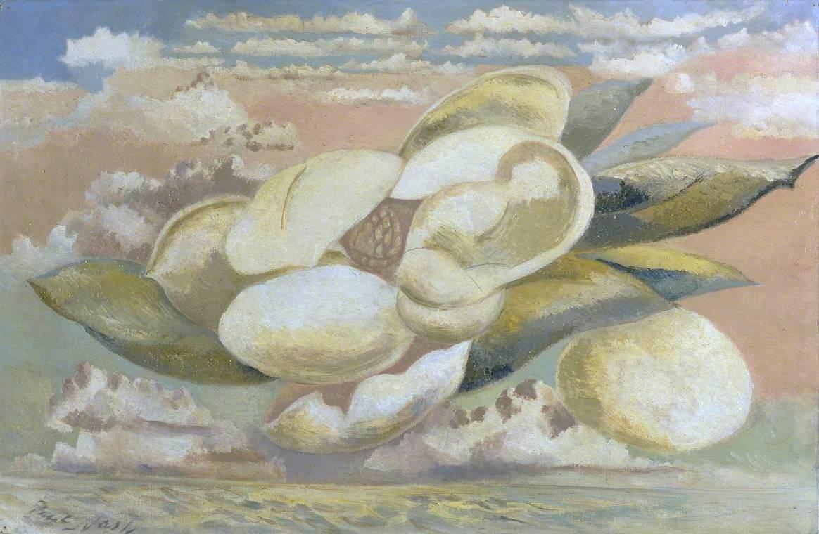 Flight of the Magnolia