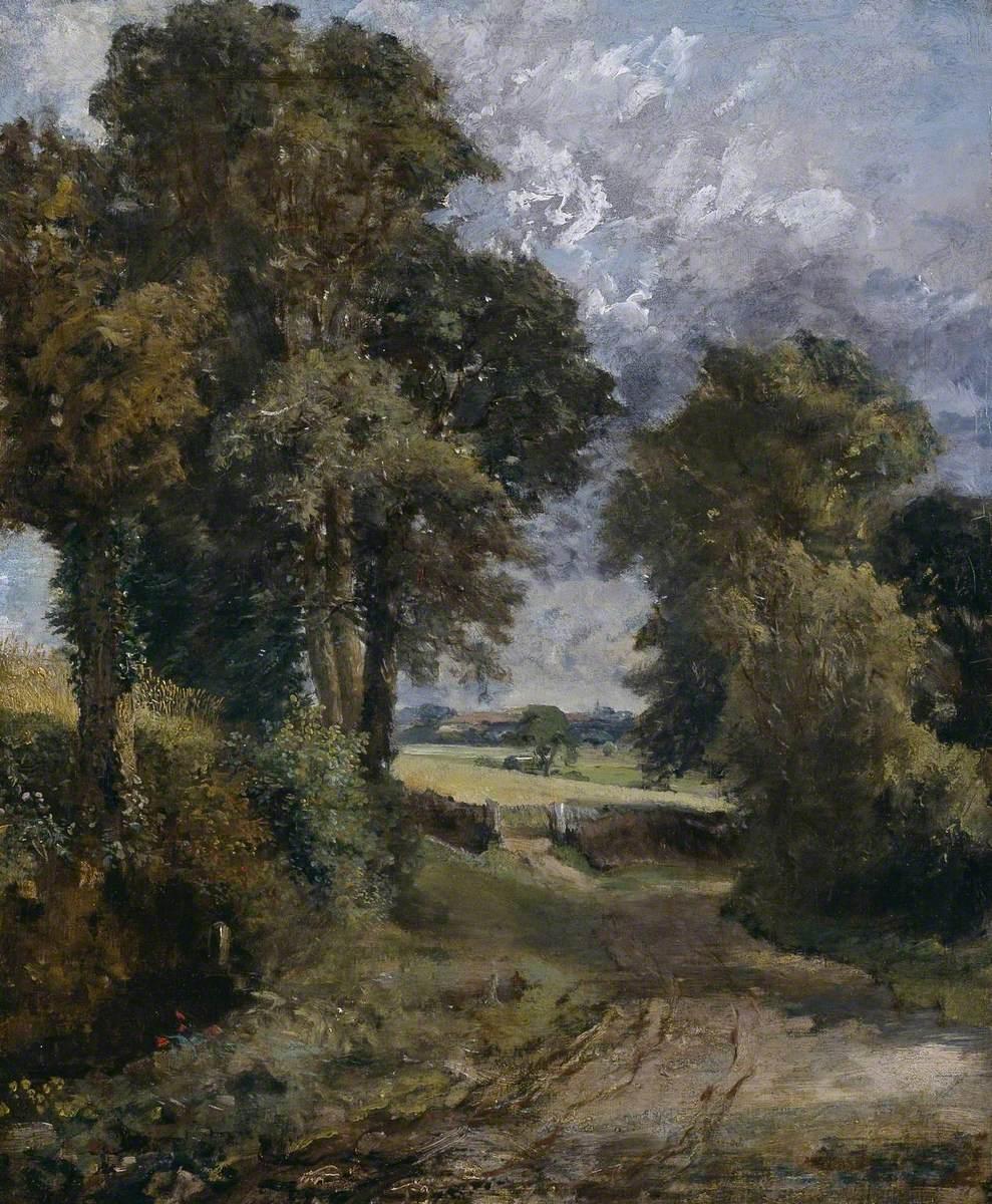 A Cornfield