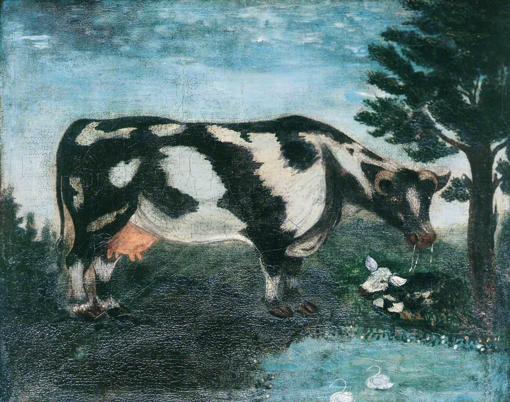 'Daisy' the Cow