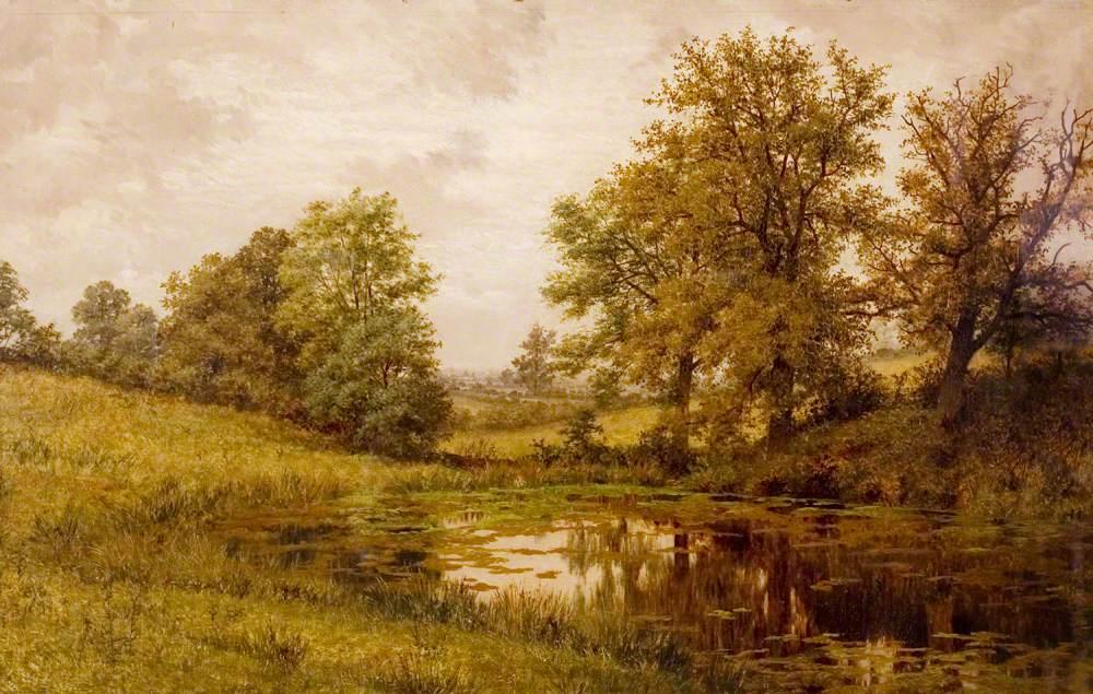 Pond near Whittem's Farm, near Coundon, Warwickshire