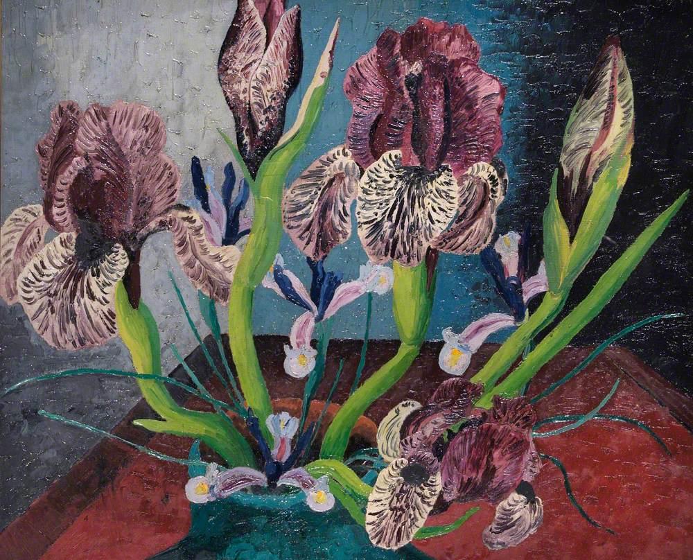 Mottled Iris