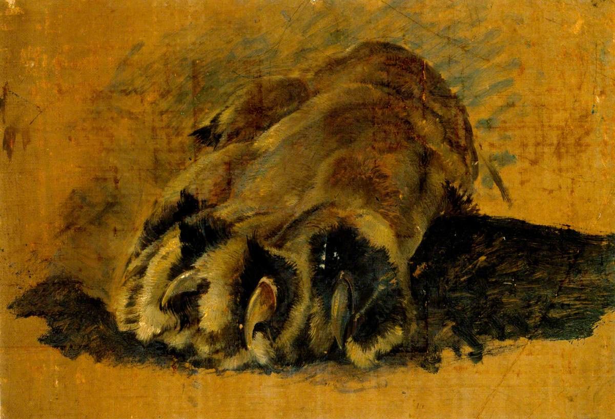 Oil Sketch of a Lion's Paw
