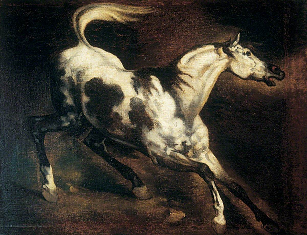A Frightened Horse
