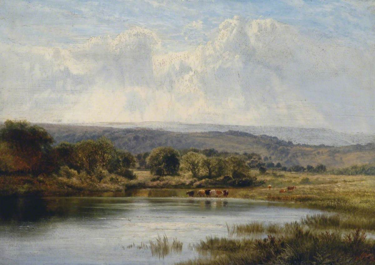Country Scene, Water and Cattle