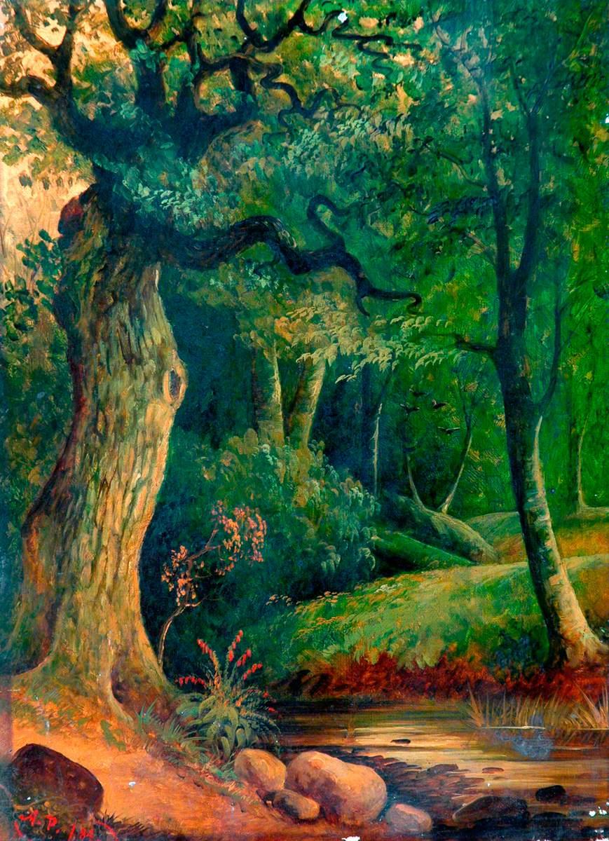 Woodland Scene with Stream