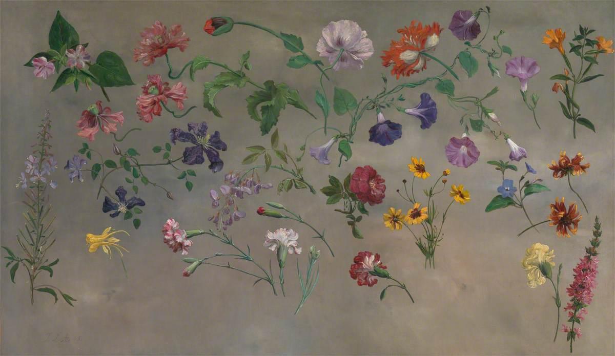 Studies of Flowers