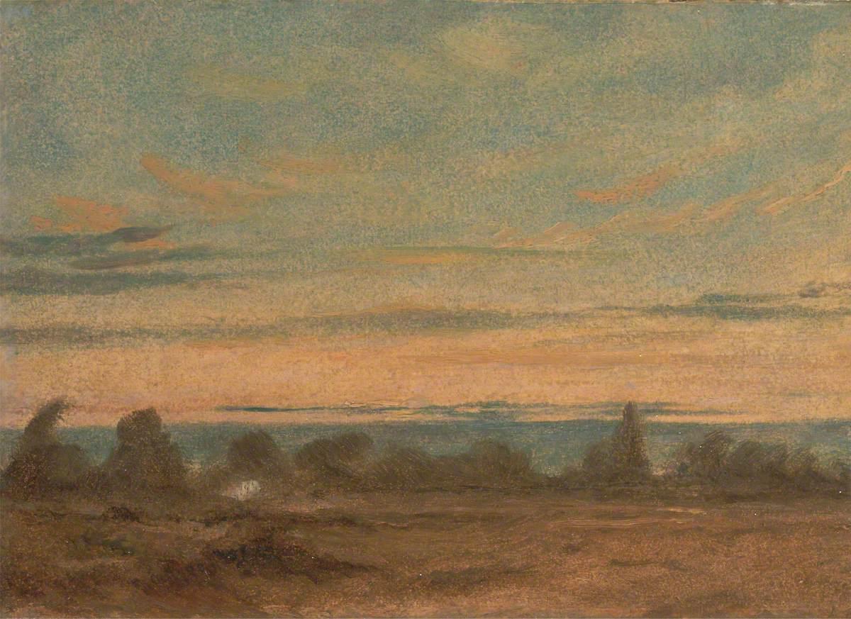 Summer – Evening Landscape