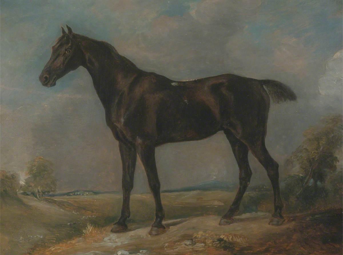 Golding Constable's Black Riding-Horse