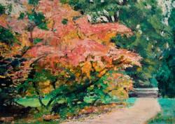Autumn Colour at Westonbirt, Gloucestershire