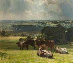 A Norfolk Landscape