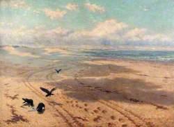 Newton Sands