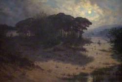 Sand Dunes, Merthyr Mawr