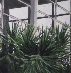 Plants in a Shopping Centre 6
