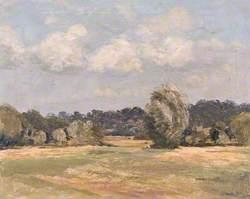 Pang Valley near Bradfield, Berkshire
