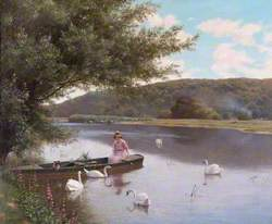 River with Swans