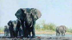 Elephants at the Waterhole