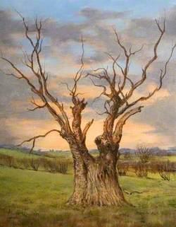 Bunyan's Oak, Harlington, Bedfordshire