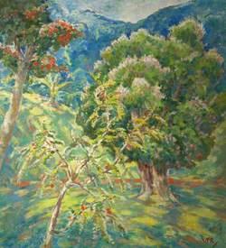 Landscape, Kandy