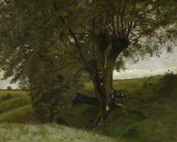 Landscape with an Ash Tree