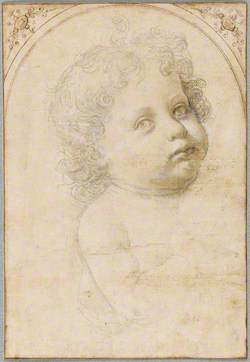 Head and Shoulder of a Baby, Turned towards the Right
